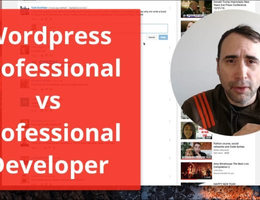 WordPress Professional vs Professional Developer – which is best?