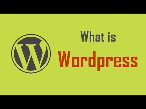 What is WordPress & What is CMS? What Is WordPress CMS Development