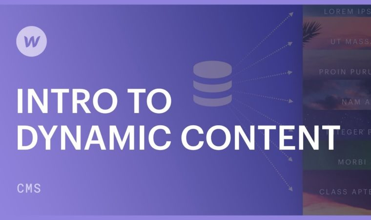Dynamic content for beginners – Webflow CMS tutorial