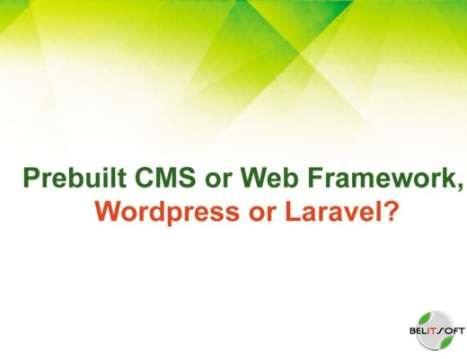 Laravel or WordPress, Prebuilt CMS or Web Framework?